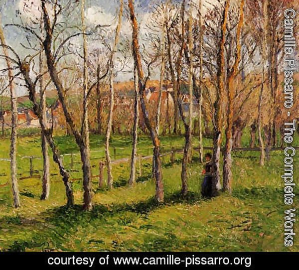 Camille Pissarro - Meadow at Bazincourt, 1885