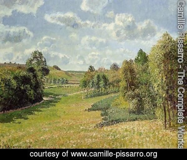 Camille Pissarro - Berneval Meadows, Morning