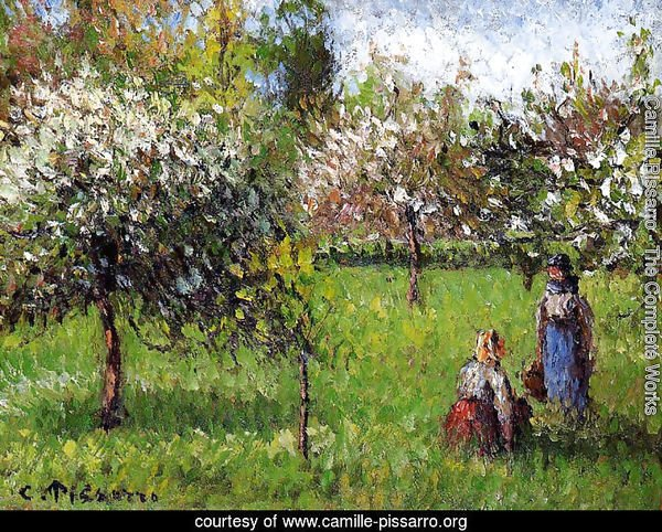 Apple Blossoms, Eragny