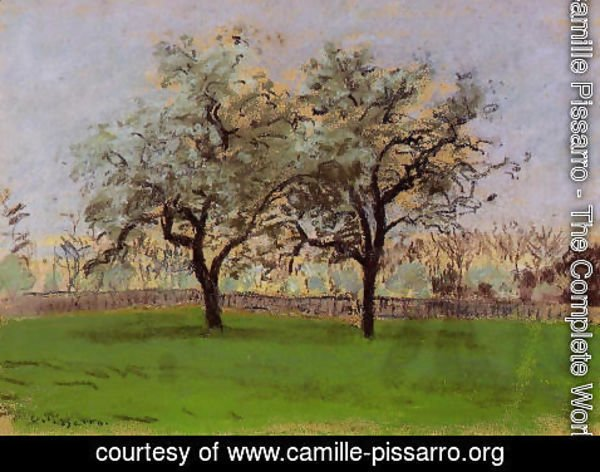 Camille Pissarro - Apples Trees at Pontoise