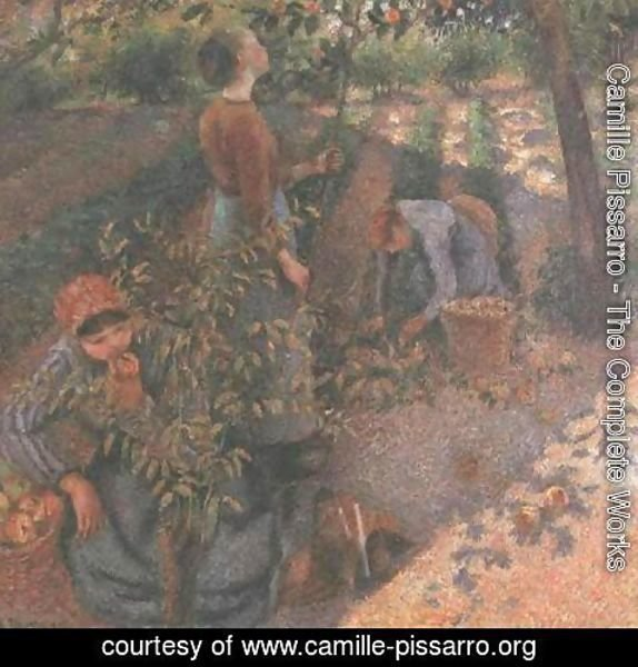 Camille Pissarro - Apple Picking