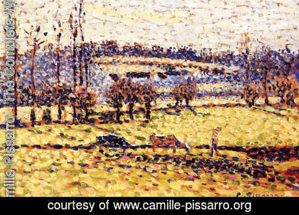 Camille Pissarro - Meadow at Bazincourt I
