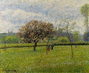 Flowering Apple Trees at Eragny