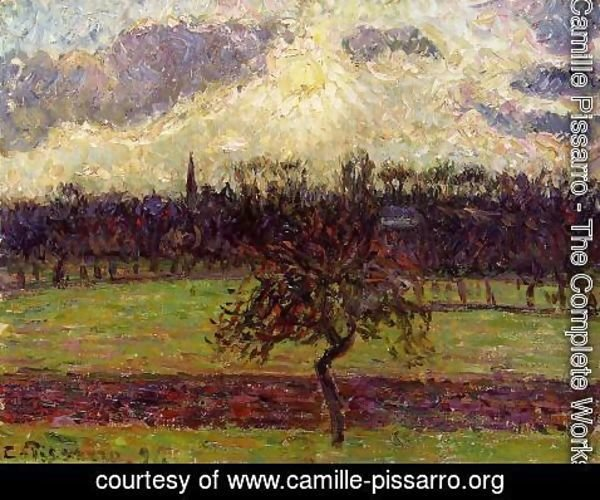 Camille Pissarro - The Fields of Eragny, the Apple Tree
