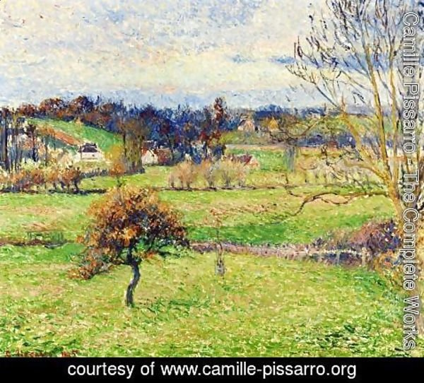 Camille Pissarro - Field at Eragny