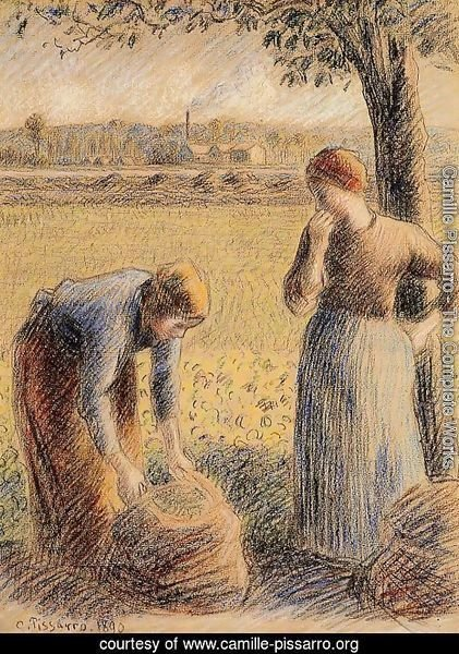 The Harvest  1890