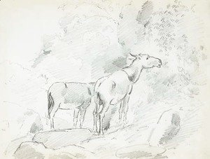 Camille Pissarro - Two donkeys grazing in the mountains