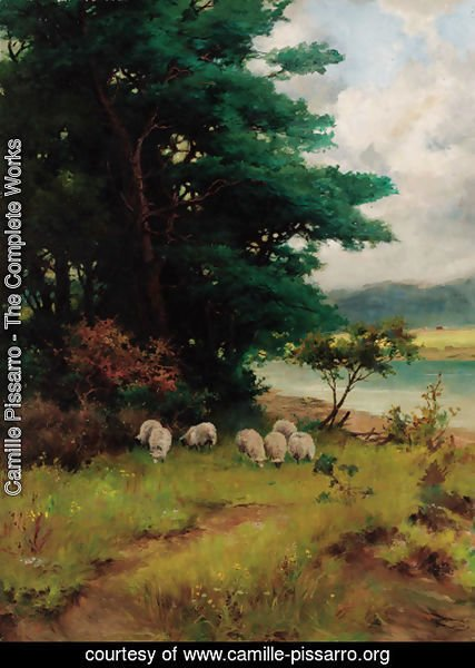 Sheep grazing in a wooded river landscape