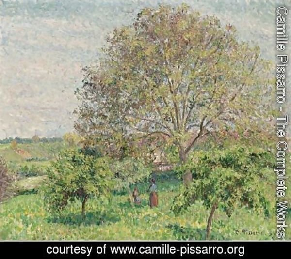 Camille Pissarro - Le Grand Noyer Au Printemps, Eragny