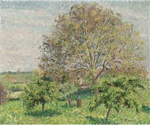 Le Grand Noyer Au Printemps, Eragny