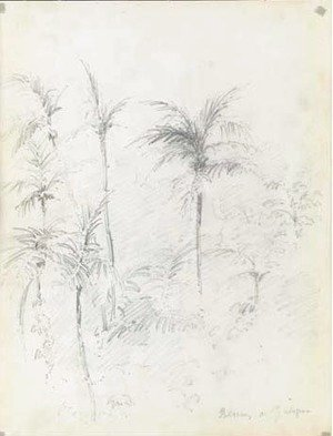 Camille Pissarro - A landscape with palm trees